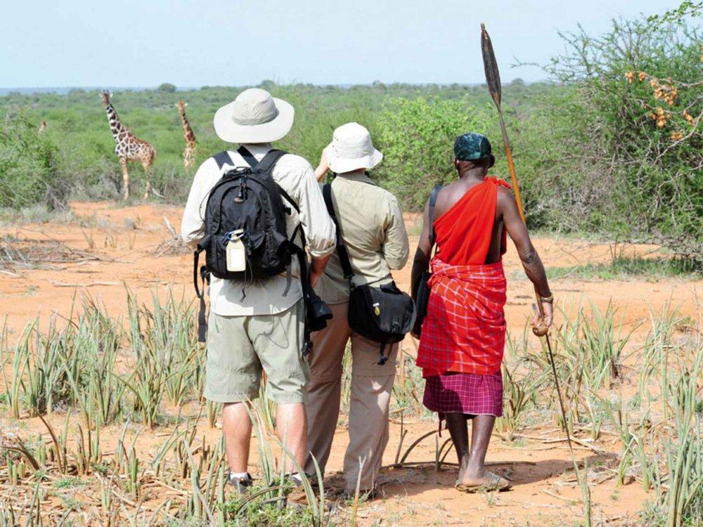 Kenia hautnah - Wandersafari