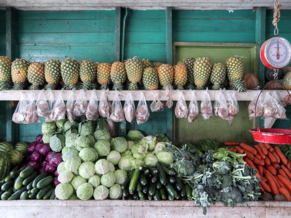 Bocas del Toro - Früchte