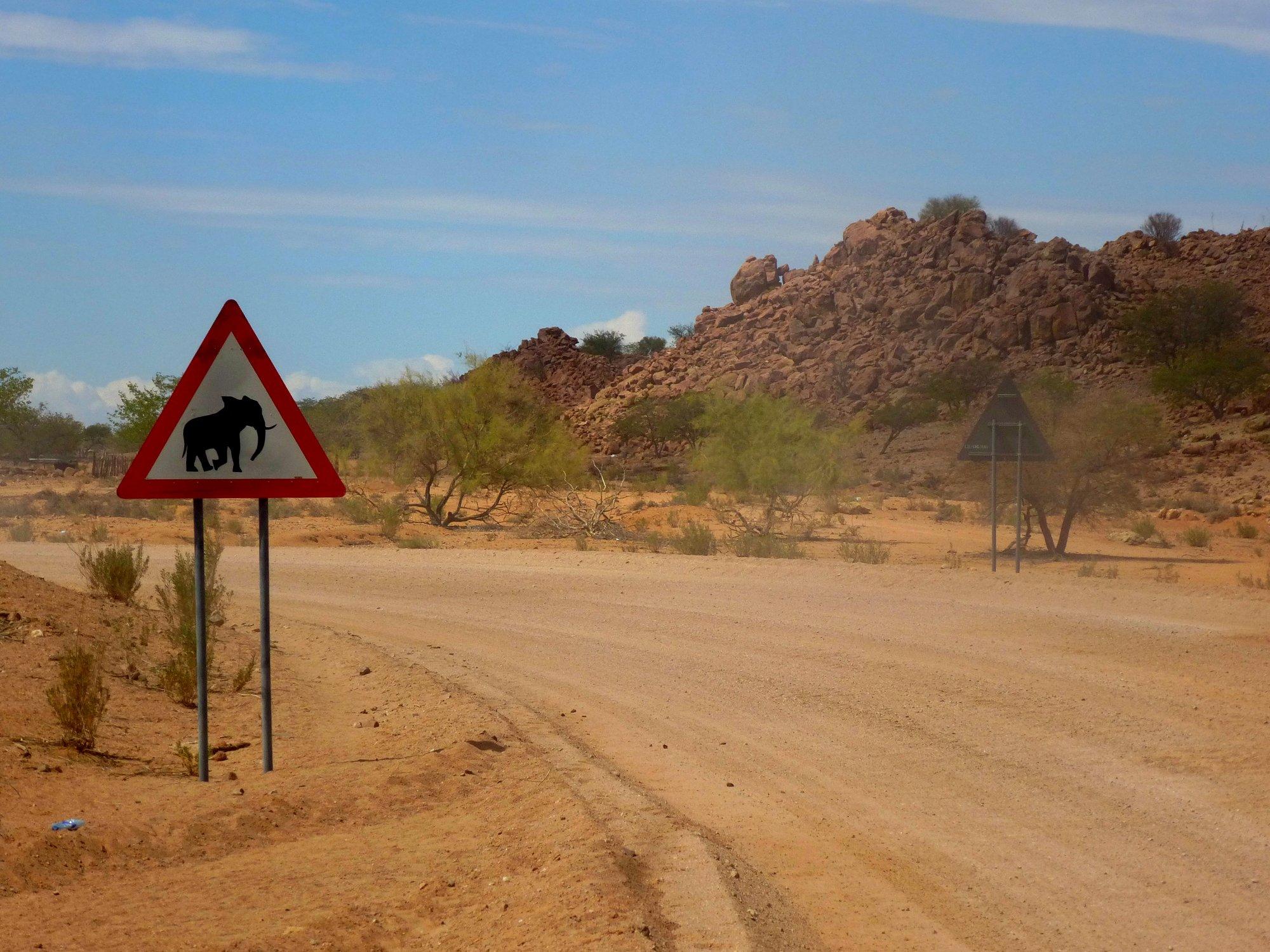 Vorsicht - hier könnte wirklich ein Elefant die Piste überqueren