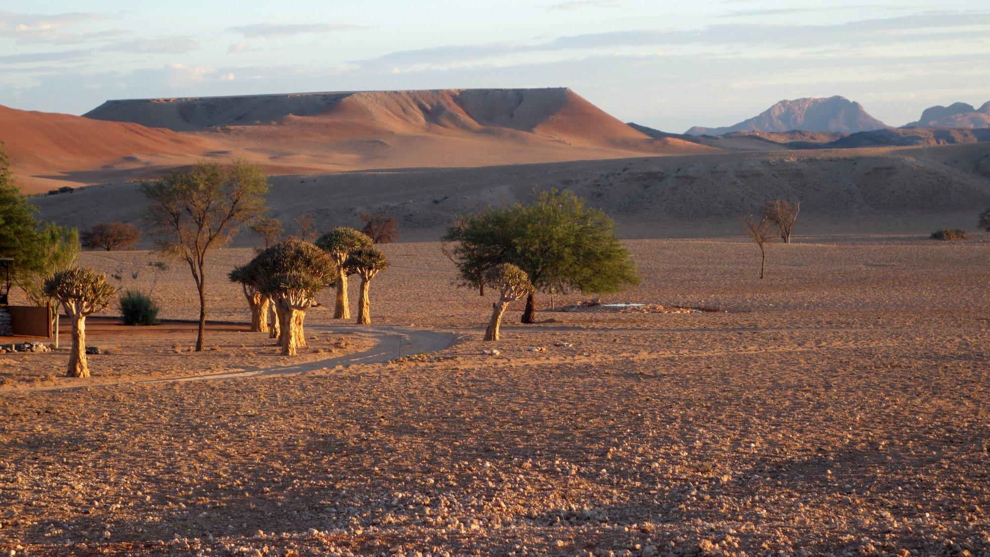 Faszinierende Landschaft im Norden Namibias