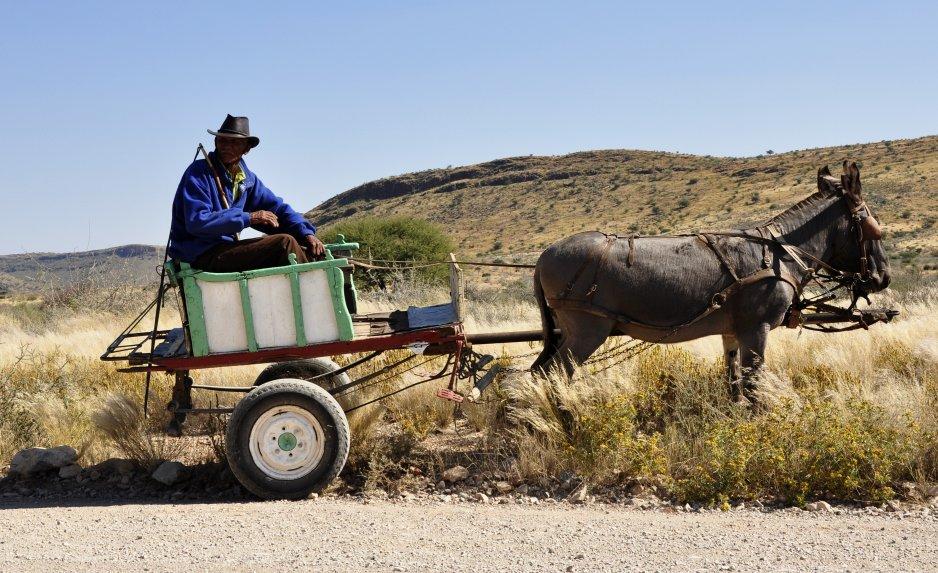 Gemächliche Fahrt mit dem Eselskarren