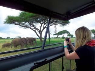 Kenia & Tansania Abenteuer Safari mit Komfort