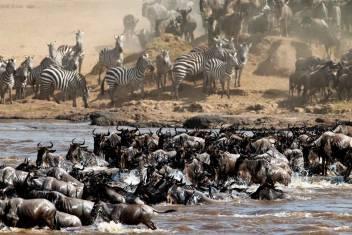 Ultimative Afrika Abenteuerreise