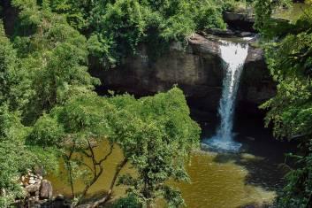 Khao Yai Nationalpark - Regenwald pur