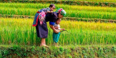 Wandererlebnis im Bergland von Nordvietnam