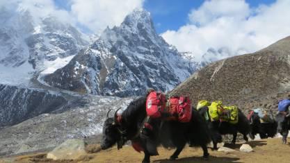 Everest Hohe Pässe