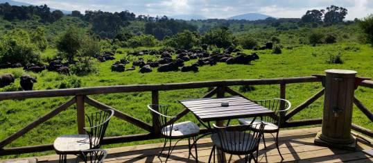 Tansania Abenteuer-Safari mit Komfort III