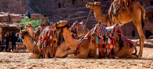 Entdeckerreise durch Jordanien und Ägypten