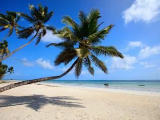 Paradies Bazaruto Island