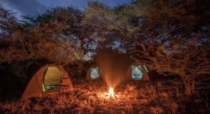 Botswana Wildnis Safari