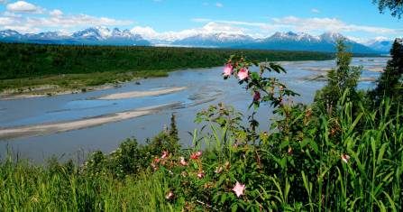 Yukon & Alaska Naturerlebnis