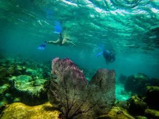 Naturerlebnis Belize