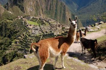 Erlebe Peru - Amazonas, Inka Trail & Titicacasee