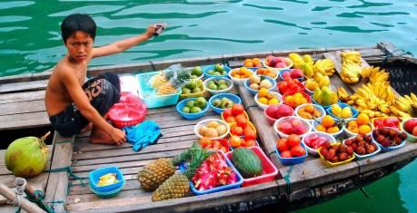 Vietnam Familien-Abenteuer