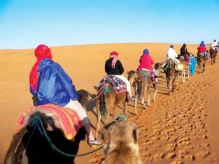 Kameltour in der Wüste von Marokko