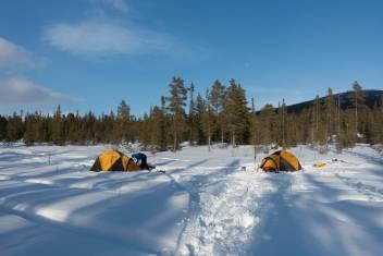 145A10007_Schneeschuh-Expedition in Schwedens Wildnis_8
