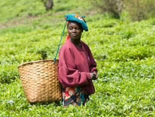 Kultur & Geschichte Ruandas