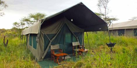 Tansania Abenteuer Safari mit Komfort V