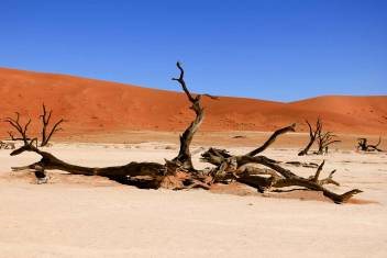 Namibia Komfort-Safari