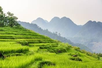 Pu Luong Naturreservat