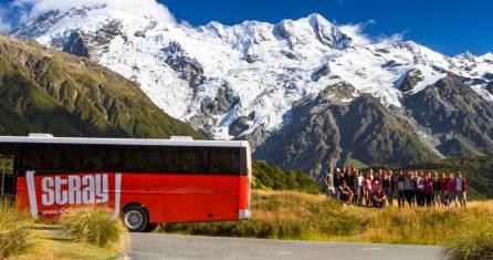 STRAY Neuseeland Buspass - MAX