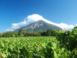 Insel Ometepe Vulkan Concepcion