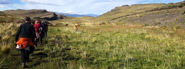 Abenteuer Erlebnisreise Patagonien