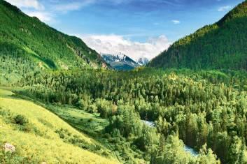 Einsames Wildnistrekking in der Westmongolei