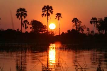 Entdecke Botswana