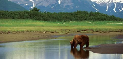Alaska Camping Abenteuer