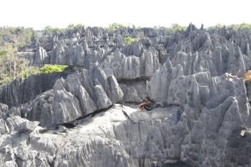 Tsingys Bemaraha Nationalpark