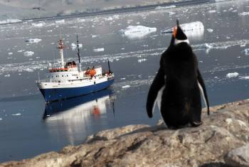 Antarktis Explorer