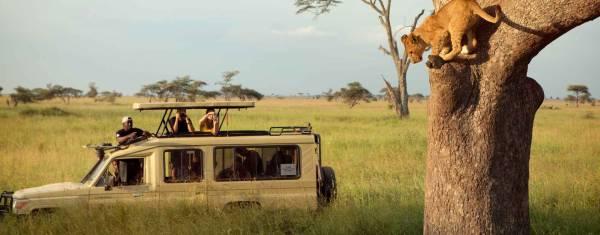 Kenia & Tansania Wildlife Safari