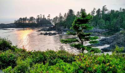 Wandern & Kajak auf Vancouver Island