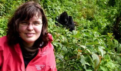 Gorilla & Schimpansen Safari