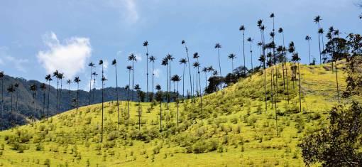 Kolumbien - Trekking zwischen Vulkanen & Lagunen