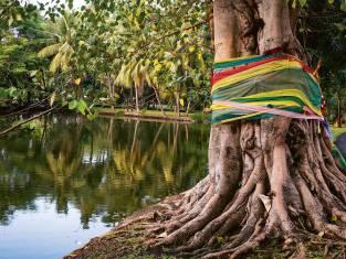 Sri Lankas unbekannter Norden