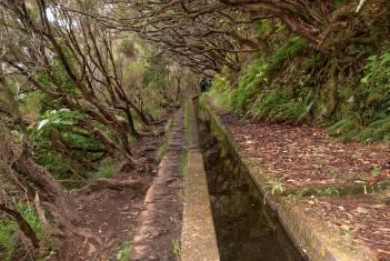 Wanderwoche auf Madeira