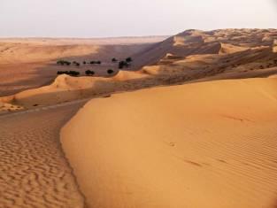 Faszination Salalah & Wüste