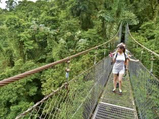Unterwegs im mystischen Monteverde Nebelwald