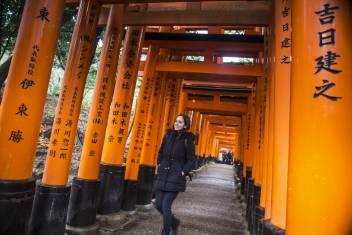 Fushimi-Inari-Taisha Torii-Gates