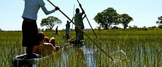 Botswana and Falls Adventure