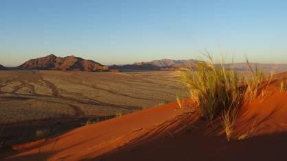 Landschaft in der Wüste von Namibia