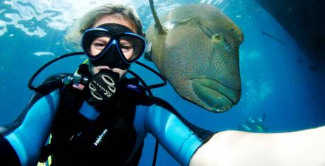 Outer Great Barrier Reef - Passions of Paradise