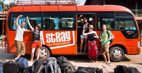 STRAY Buspass - LOT