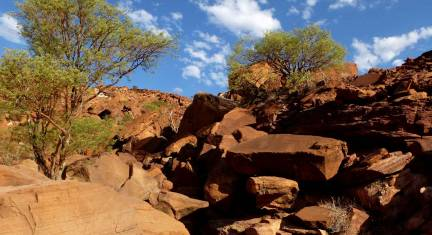Namibias Norden: Wildnis & Küste