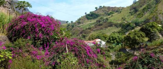 Kapverden - Entdeckungsreise Nordinseln