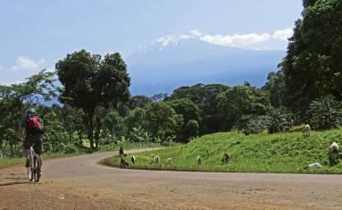Kilimandscharo MTB Tour