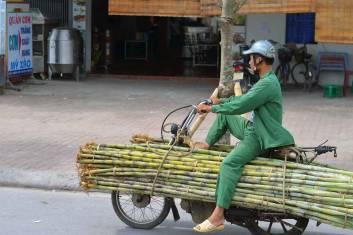 Kambodscha und Vietnam Rucksackreise