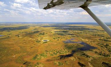 Okavango Delta Fly-In Safari